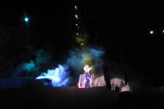 Fantasmic 7