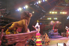 Festival of The Lion King 7