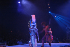 Festival of The Lion King 11