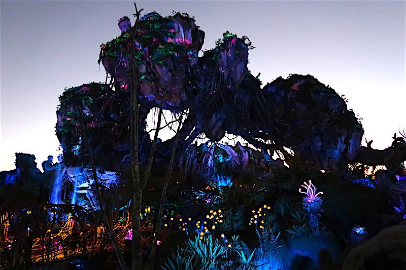 Pandora Animal Kingdom